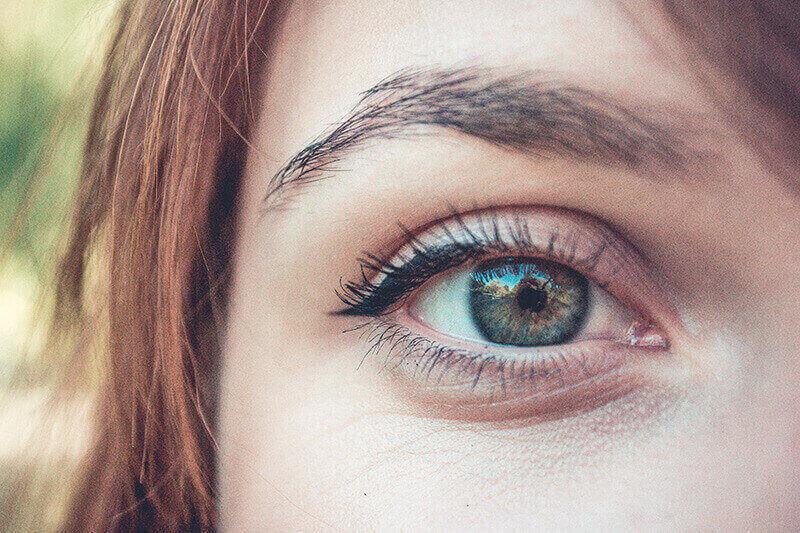 guia micropigmentacion